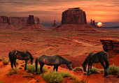 Horses at John Ford's Point Overlook at sunset in Monument Valley Tribal Park, Arizona USA