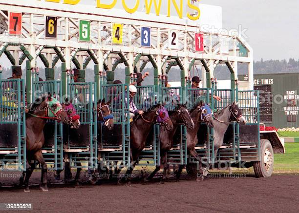 Horses being let out of a gate during a race on a track picture id139856528?b=1&k=6&m=139856528&s=612x612&h=ikx da2wnqus4v 3plyssq9c2jjf mlojhdeowva54s=