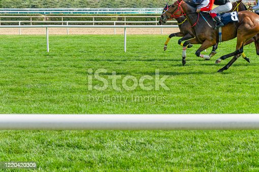 Horses competing on the grass
