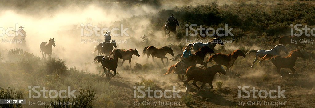 Horses Cowboys and Wranglers series 3 royalty-free stock photo