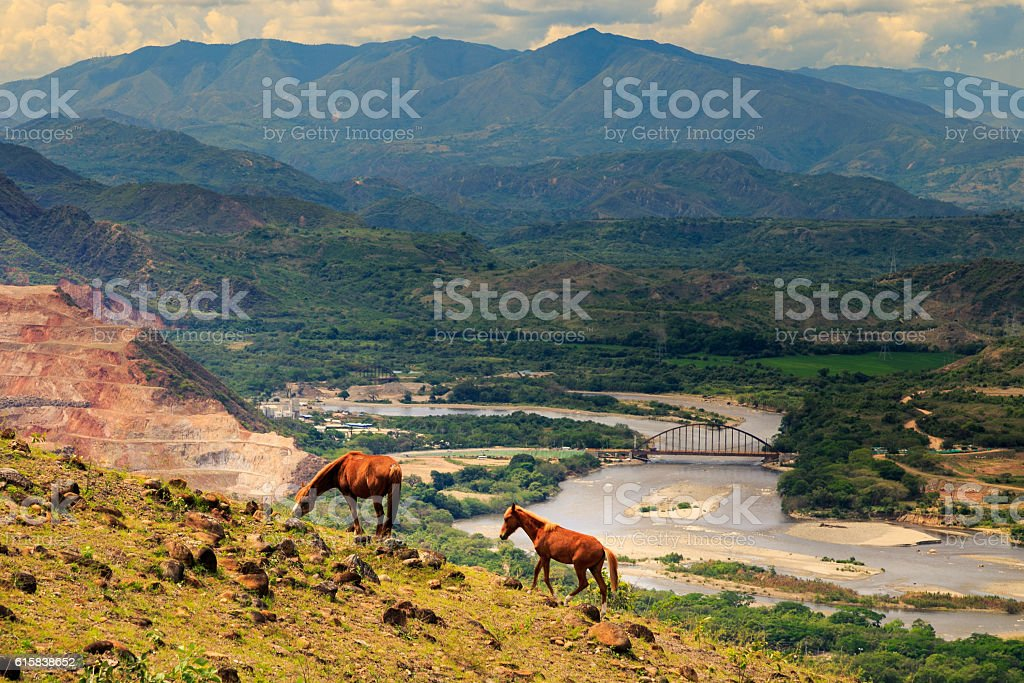 horses in the mountains, mountains with river landscape, colombi stock photo