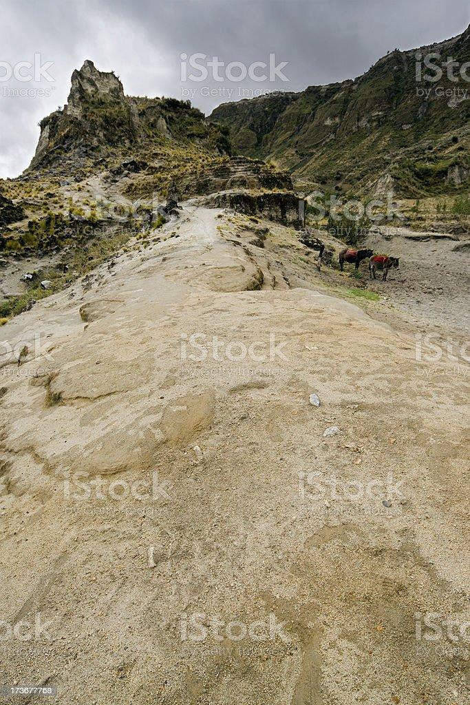 Horses in the Quilotoa volcano stock photo