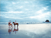 Group of horse riders gallop on the beach next to the sea