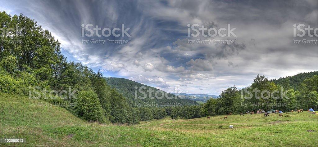 Horses on mountain royalty-free stock photo