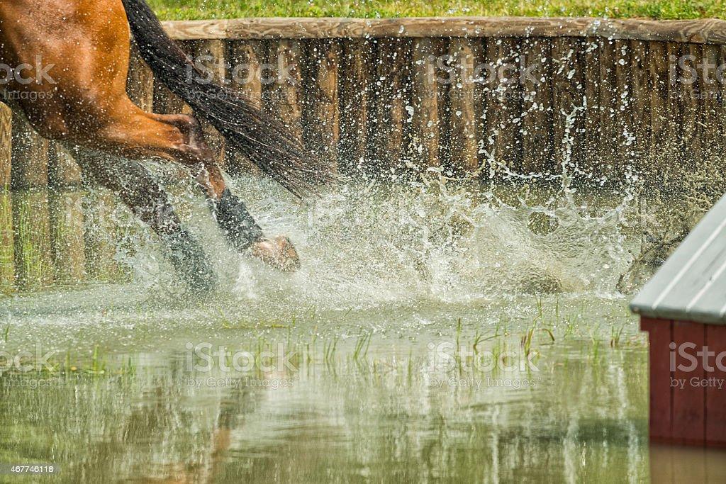 Horse's rear legs splashing through water, three day event stock photo