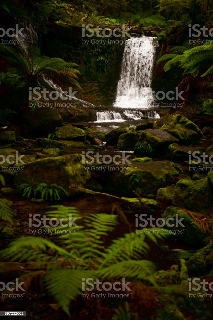 Horseshoe Falls in Mount Field National Park. stock photo