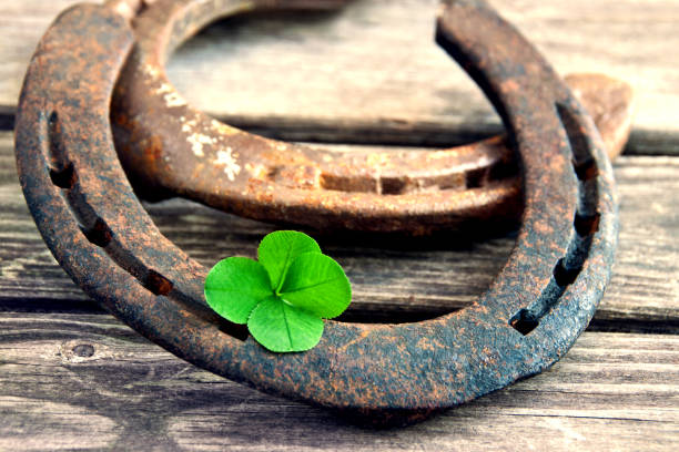 Horseshoe with lucky clover 4 leaves on wood stock photo