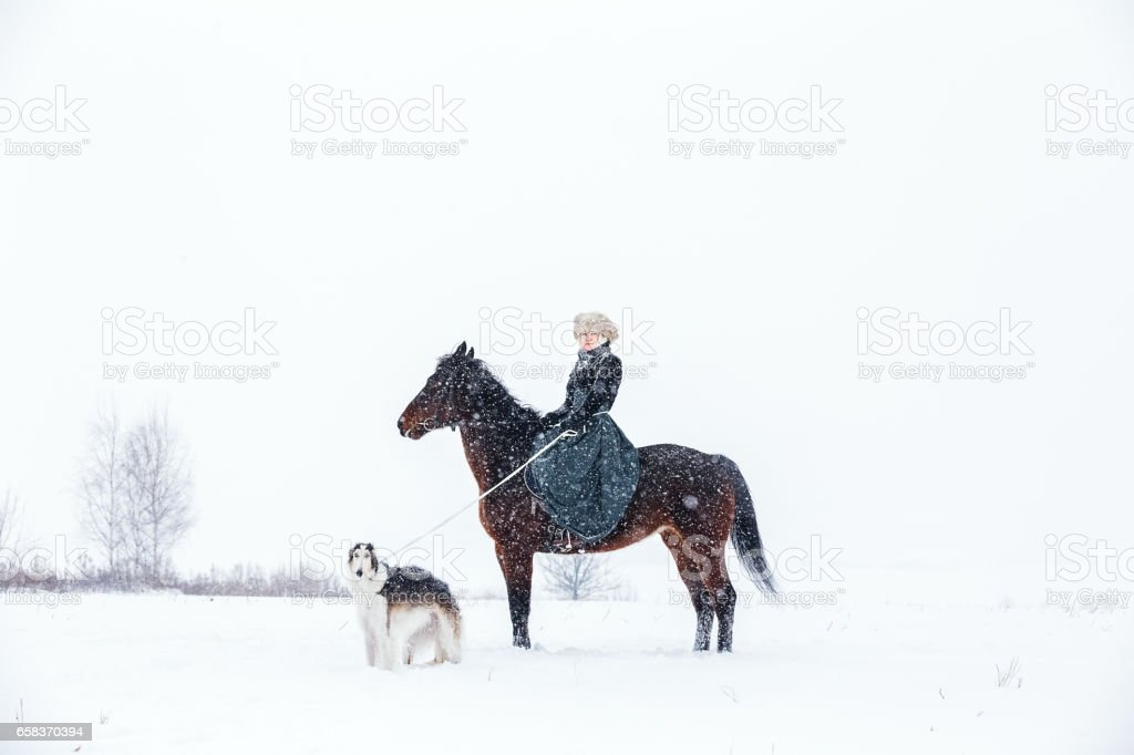 Horsewoman on the reconstruction of dog hunting stock photo