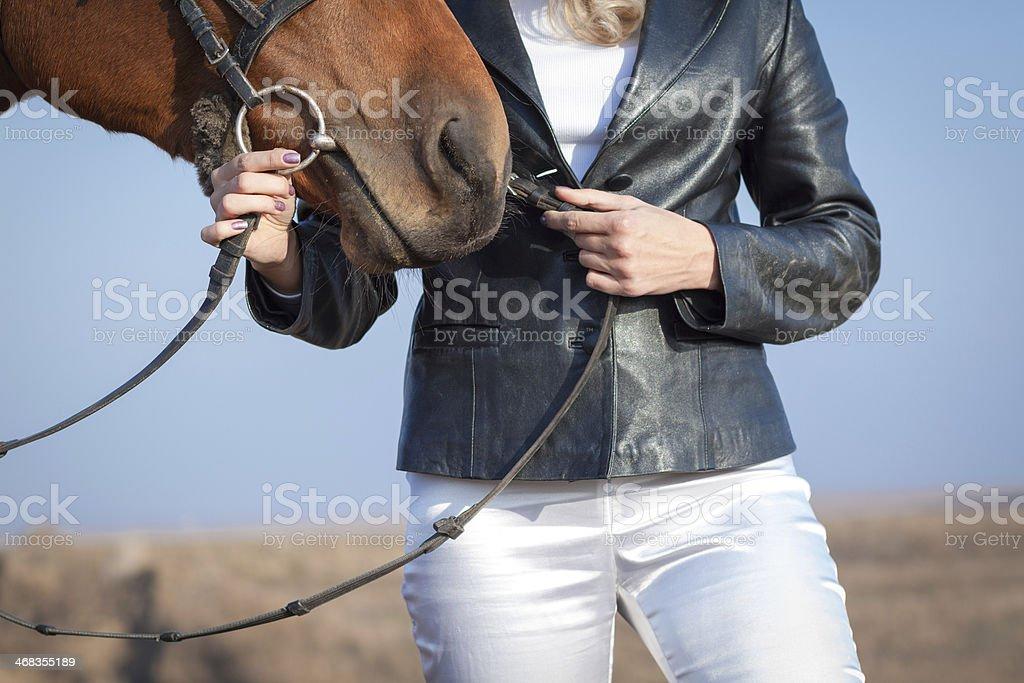 Horsewoman royalty-free stock photo