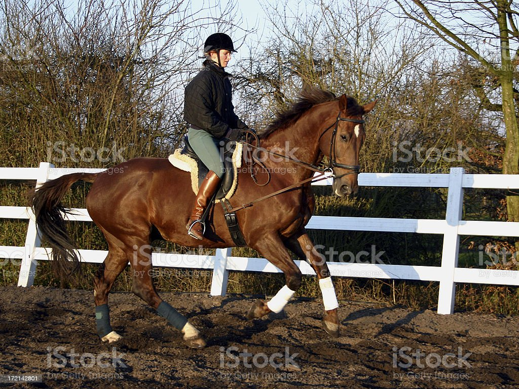 Horsewoman riding 3 royalty-free stock photo