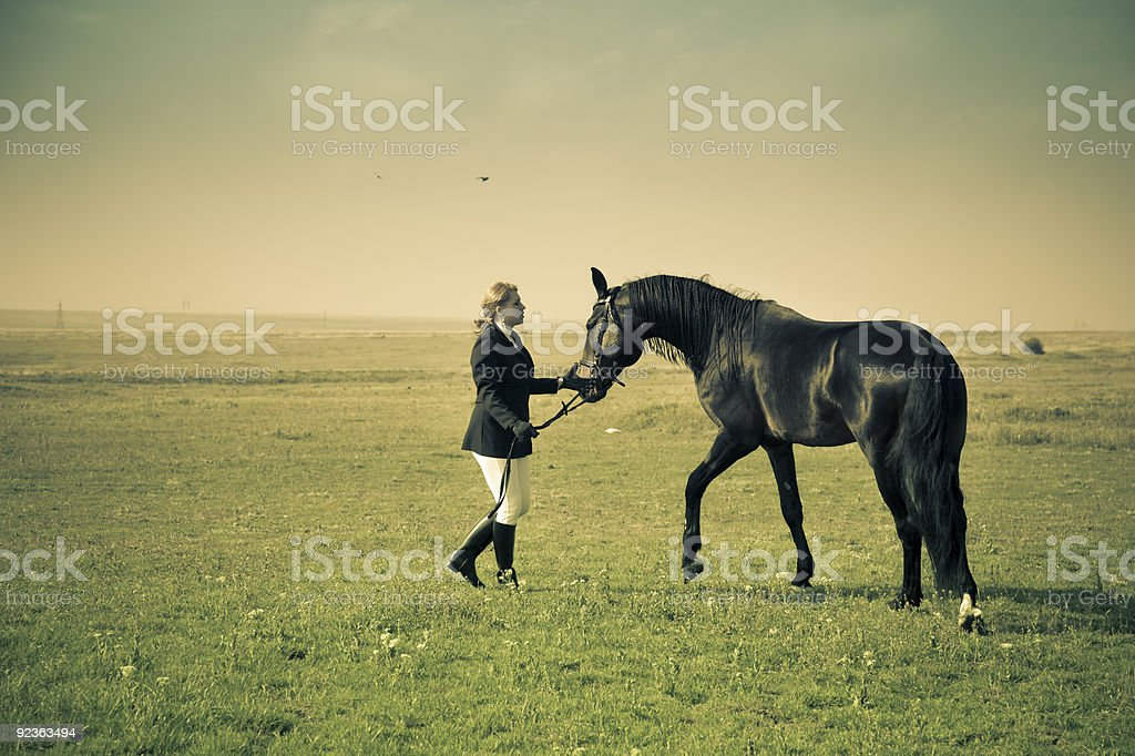 horsewoman trains the horse / split vintage toned royalty-free stock photo