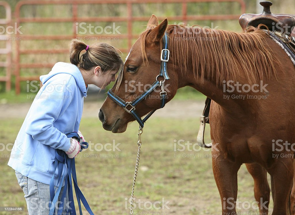 horsing around - girl with her horse royalty-free stock photo