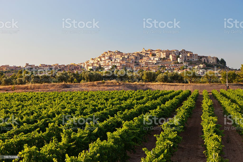 Horta de Sant Joan royalty-free stock photo