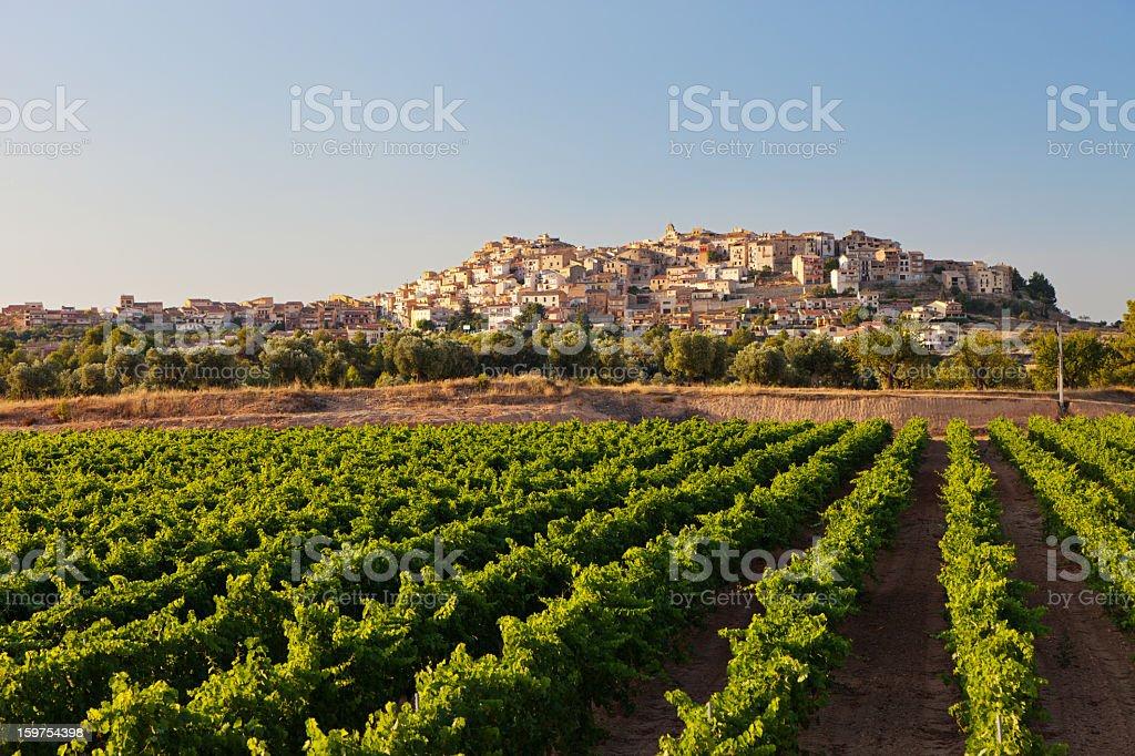 Horta de Sant Joan stock photo