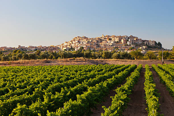 Horta de Sant Joan The Spanish town of Horta de St Joan in the late afternoon sun, seen across a vineyard. catalonia stock pictures, royalty-free photos & images