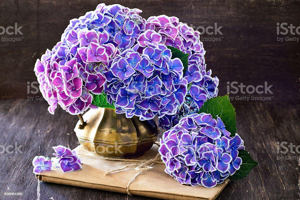 Hortensia Flowers stock photo
