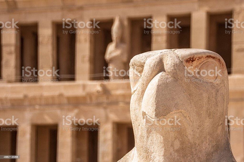 Horus guarding Hatshepsut temple in Luxor, Egypt stock photo