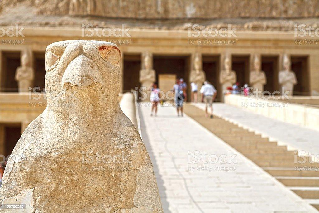 Horus. Temple of Hatshepsut. Luxor, Egypt stock photo