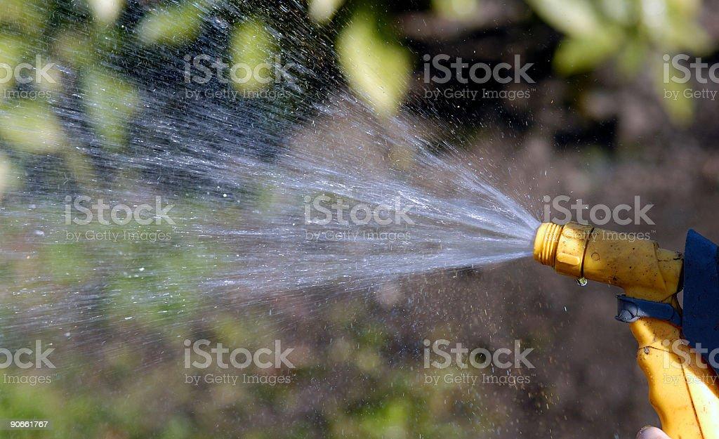 hosepipe spraying water royalty-free stock photo