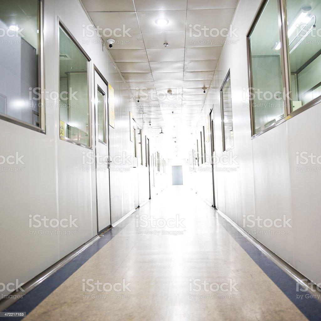 hospital lab royalty-free stock photo