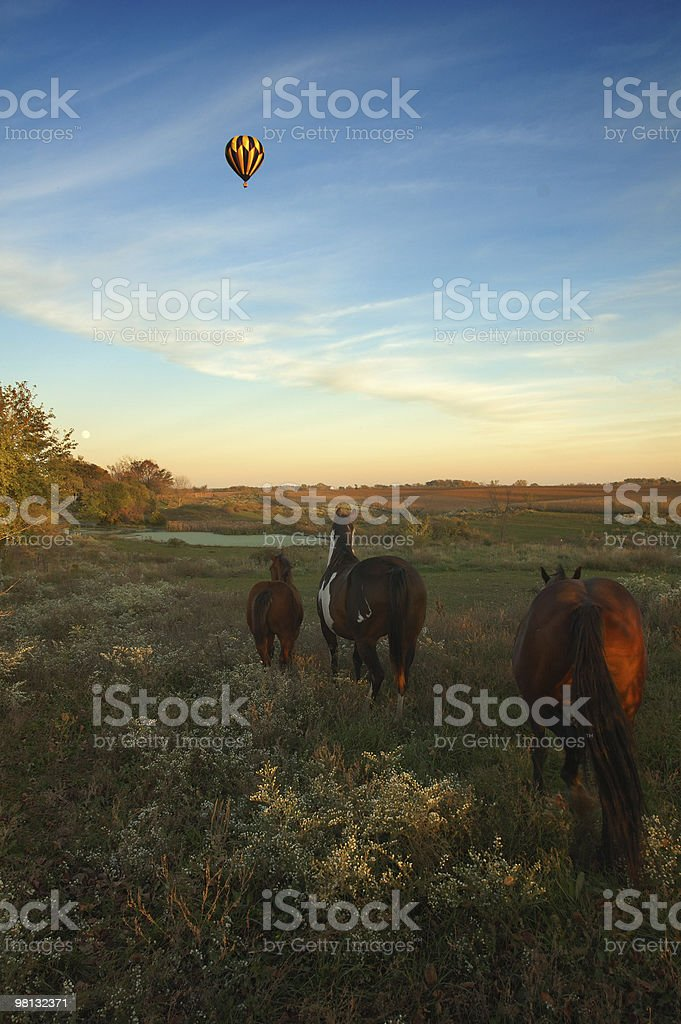 hot air balloon and horses royalty-free stock photo