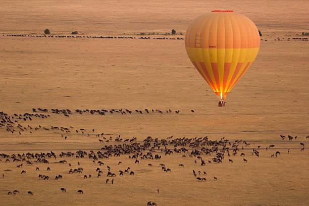hot air balloon в масаи-мара - hot air balloon стоковые фото и изображения