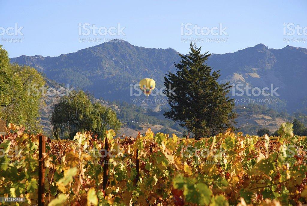Hot Air Balloon Over Napa Valley Vineyards royalty-free stock photo