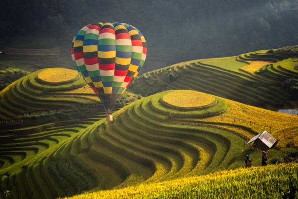hot air balloon over rice field in mu cang chai - sa pa zdjęcia i obrazy z banku zdjęć