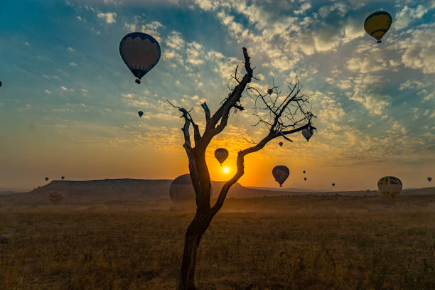 Hot Air Balloon sunrise Hot Air Balloon transvaal province stock pictures, royalty-free photos & images
