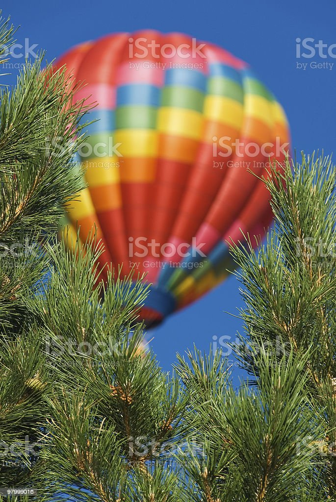 Hot air balloon through the trees royalty free stockfoto