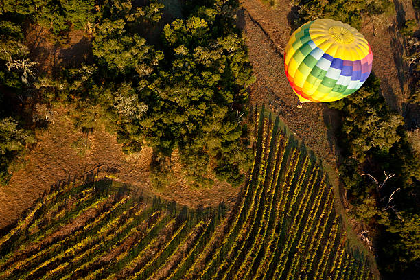 Hot air ballooning over a vineyard in Napa Valley stock photo