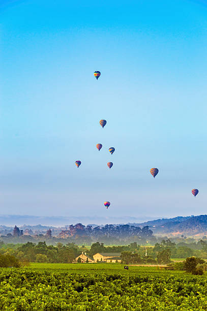Hot air balloons over Napa Valley Hot air balloons over the Napa Valley, CA in the summer sonoma stock pictures, royalty-free photos & images