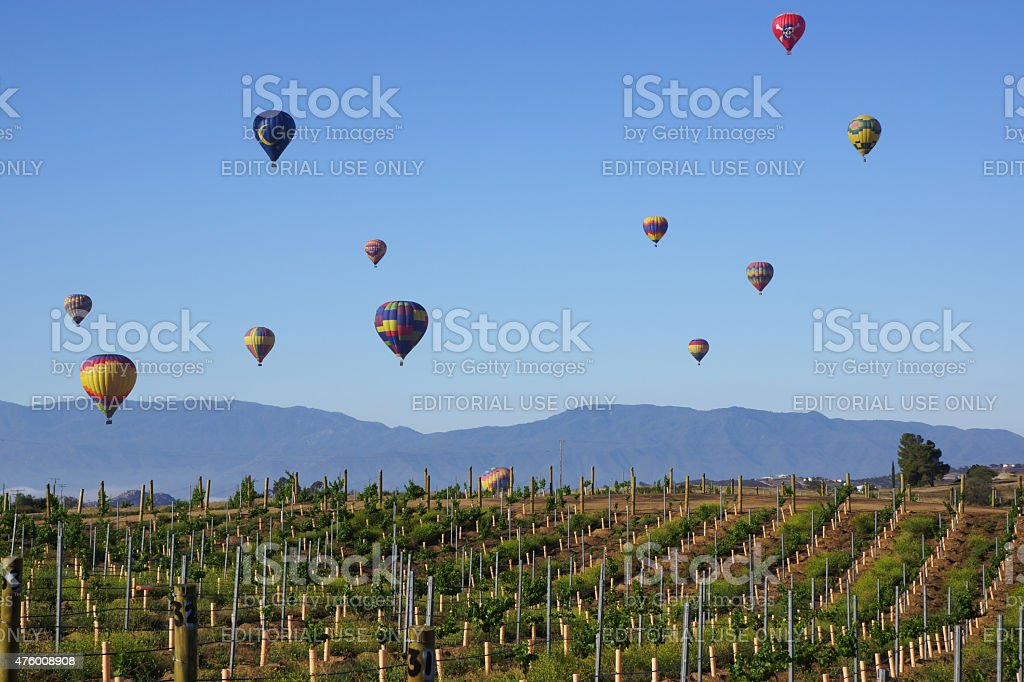 Hot Air Balloons Soaring over Temecula Wine Country stock photo