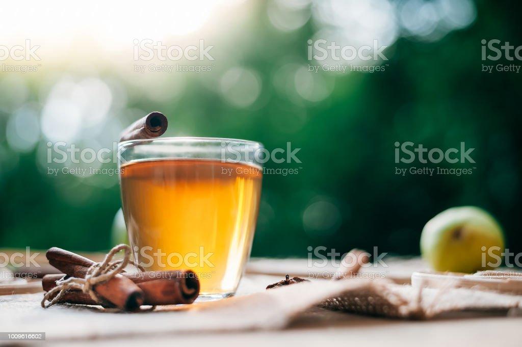 Hot Apple Cider Getränk. Heißgetränk (Apfeltee, Punsch) mit Zimtstange und Sternanis auf Tasche. Saisonale Glühwein trinken. – Foto