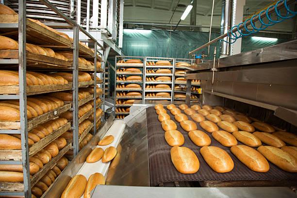 Des pains tout juste sortis du four en ligne - Photo