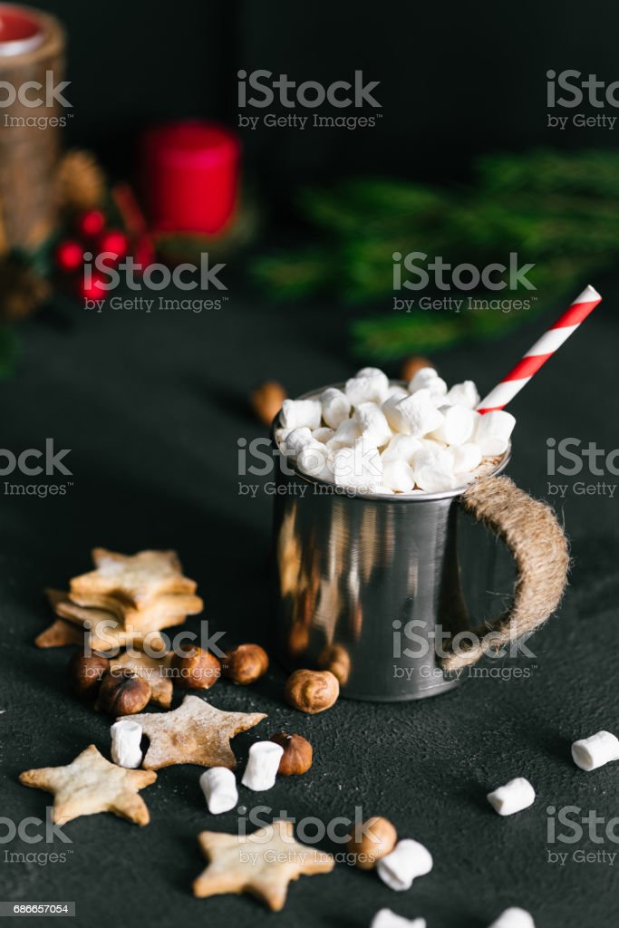 Hot cacao cup with melting marshmallow and cookies royalty-free stock photo