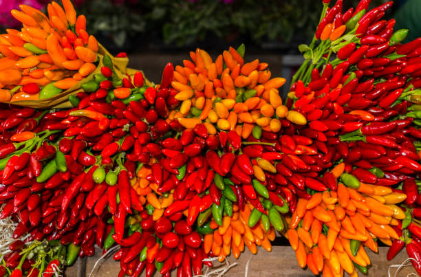 Hot Chili peppers for sale in a flower market - foto stock
