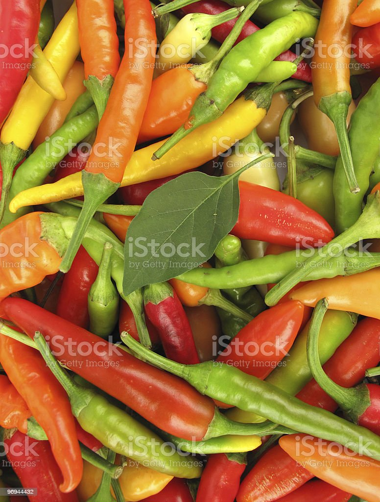 Hot chili peppers pile royalty-free stock photo