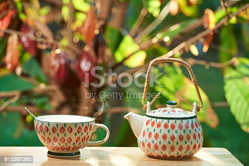 istock Hot chocolate drink in morning 913387360