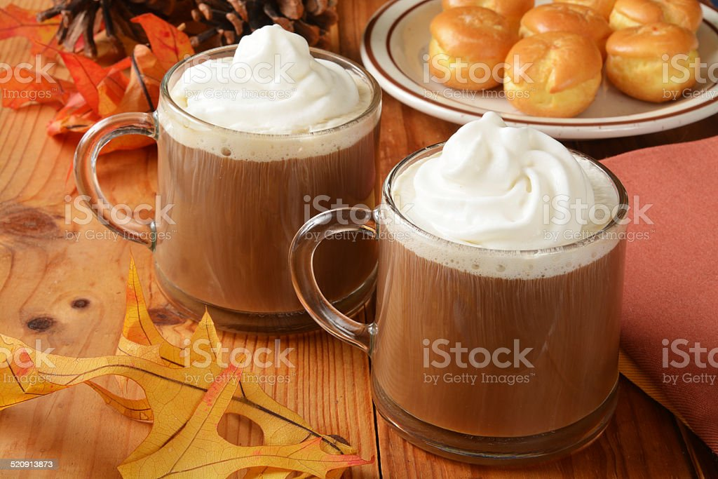 Hot chocolate for the holidays stock photo