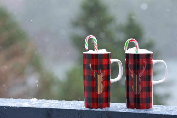 heiße schokolade mit zuckerstangen im schnee - pfefferminzschokolade stock-fotos und bilder