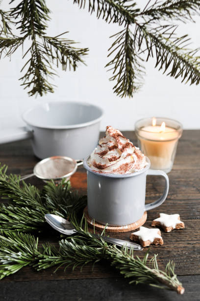 Hot Chocolate with Fir branch and Christmas Cookies stock photo