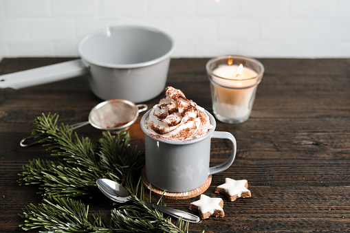 Hot Chocolate with Fir branch and Christmas Cookies