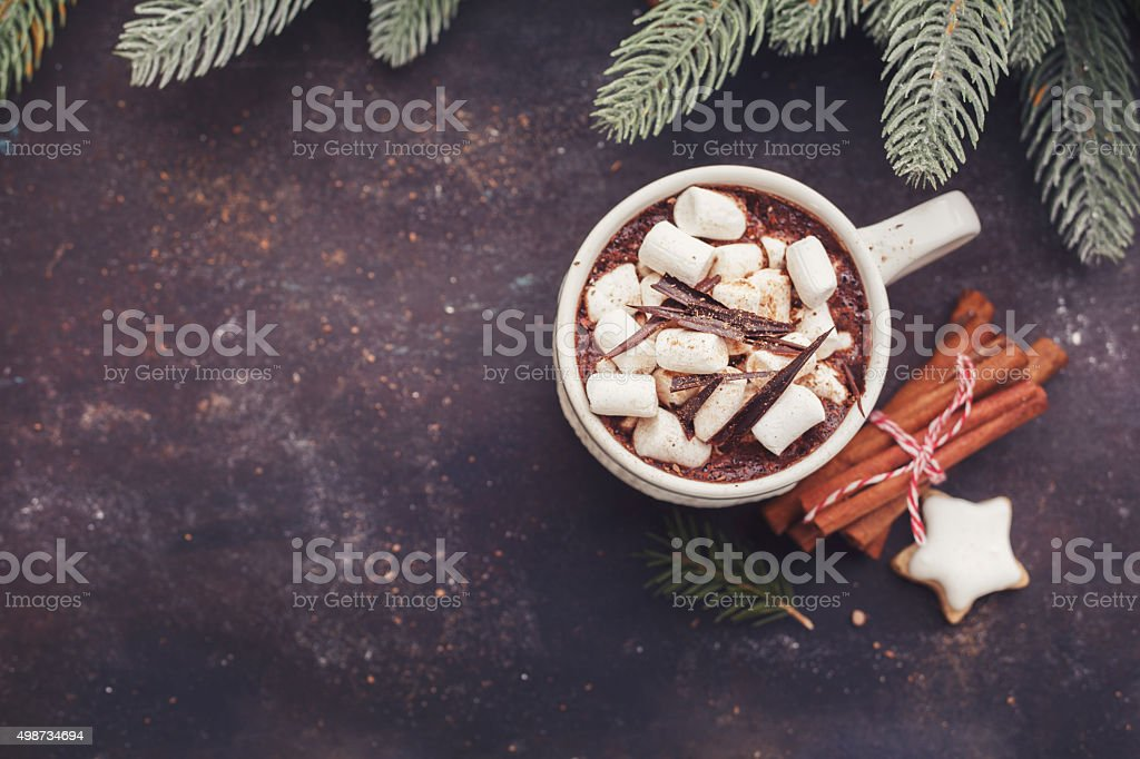 Hot chocolate with marshmallows and cookies. stock photo