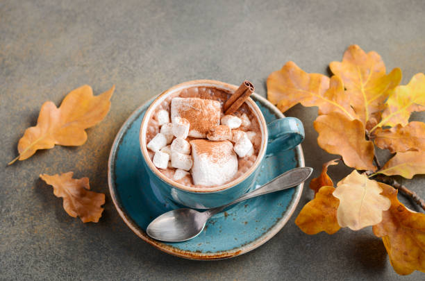 Hot Chocolate with Marshmallows decorated with Autumn Leaves. stock photo
