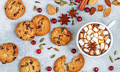 Hot chocolate (coffee, cocoa) with marshmallows in a white Cup and homemade cookies with cranberries, almonds and spices (cinnamon, star anise, cardamom, cloves). A traditional winter or autumn treat