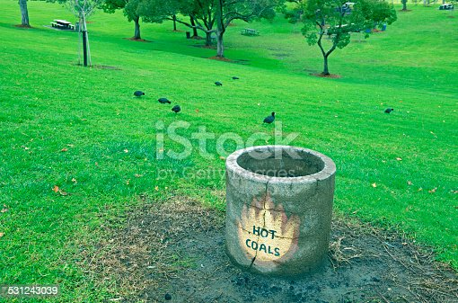 Hot coal container and coots in park at Lake Poway in southern California