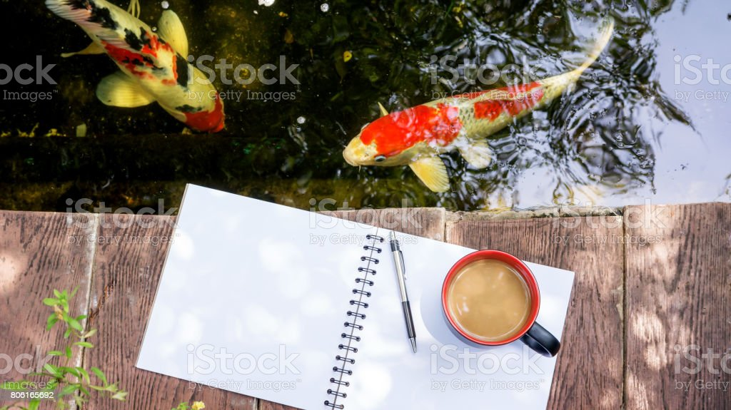 hot coffee, book, and pen place near a fancy carp pond. stock photo