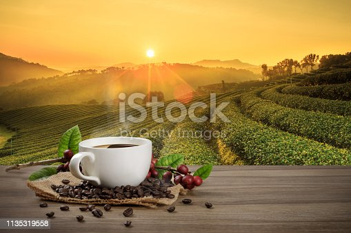 istock Hot coffee cup with fresh organic red coffee beans and coffee roasts on the wooden table and the black background with copyspace for your text. 1135319558