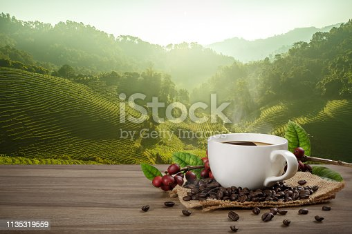 1135319558 istock photo Hot coffee cup with fresh organic red coffee beans and coffee roasts on the wooden table and the black background with copyspace for your text. 1135319559